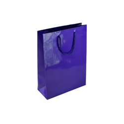 Small Purple Paper Gift Bag