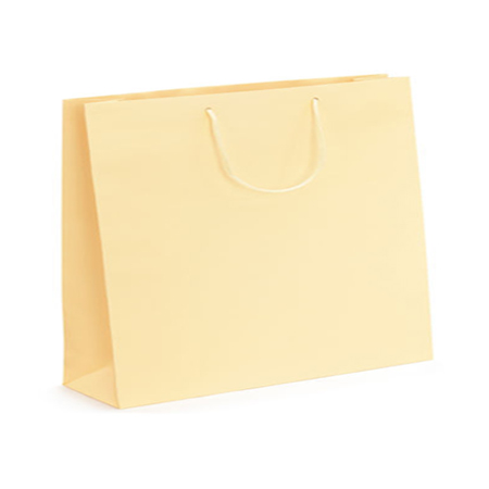 Large Cream Matt Laminated Paper Bags
