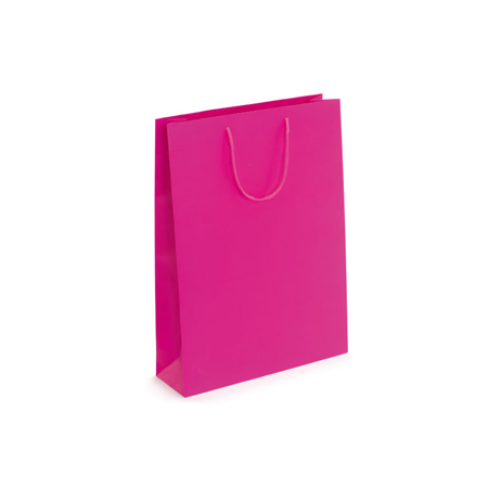 Small Fuchsia Matt Laminated Paper Bags