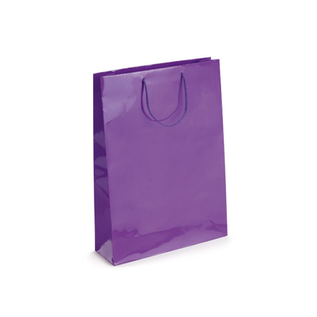 Small Purple Gloss Laminated Paper Bags