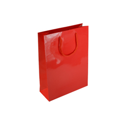 Small Red Paper Gift Bag