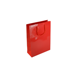 Extra Small Red Paper Gift Bag