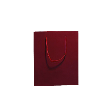 Small Burgundy Matt Laminated Paper Bags