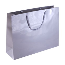 Large Silver Paper Gift Bag