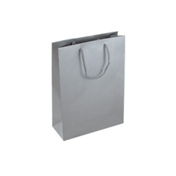 Small Silver Paper Gift Bag