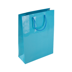Medium Sky Blue Paper Bag
