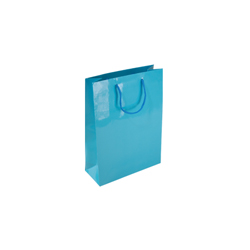 Extra Small Sky Blue Paper Gift Bag