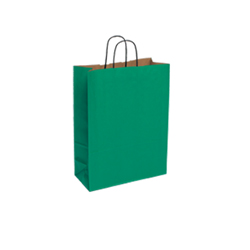 Small Green Kraft Paper Bag
