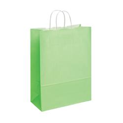 Large Lime Green Kraft Paper Bag