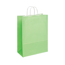 Medium-Lime Green-Kraft Paper Bag