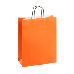 Large Orange Kraft Paper Bag