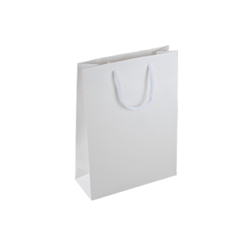 Small White Paper Gift Bag