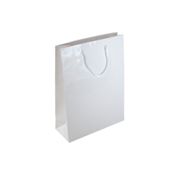 Small-White-Paper Gift Bag