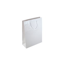 Extra Small White Paper Gift Bag
