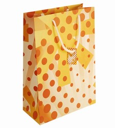 Large-Orange Circles-Paper Bags with Gift Tag