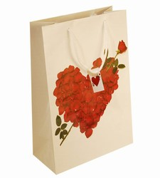 Large Arrow Heart Paper Gift Bag