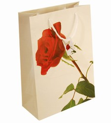 Medium Red Rose Paper Gift Bag