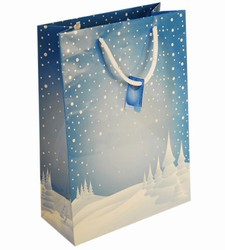Medium Blue Xmas Paper Gift Bag