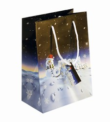 Medium Merry Xmas Paper Gift Bag
