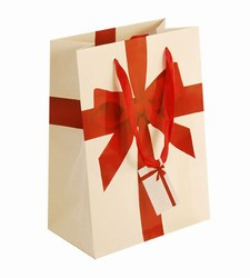 Large-Red Ribbon-Paper Bags with Gift Tag