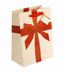 Medium-Red Ribbon-Paper Bags with Gift Tag