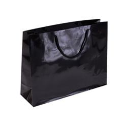 Landscape Medium Gloss Black Paper Bag