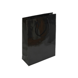 Small Plus Black Gloss Paper Gift Bag