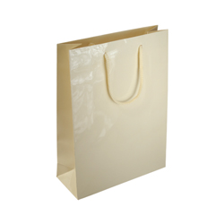 Medium Cream Paper Bag