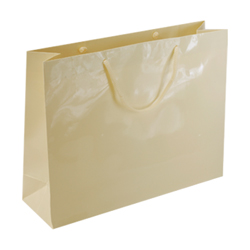 Large Cream Paper Gift Bag
