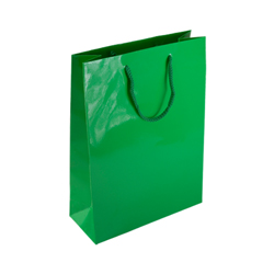 Medium Green Paper Gift Bag
