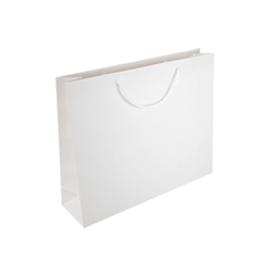Medium Plus White Paper Bags