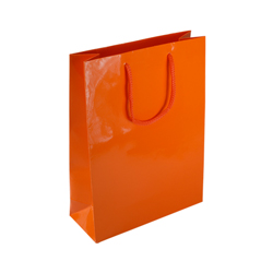 Medium Orange Paper Gift Bag