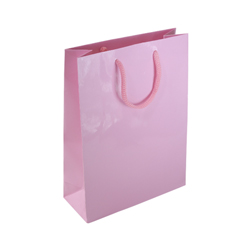 Medium Baby Pink Paper Bag