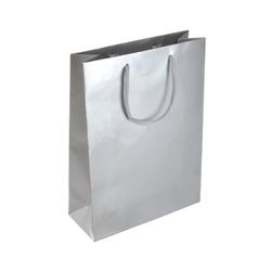 Medium Silver Paper Bag