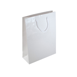 Small Plus Gloss White Paper Gift Bag