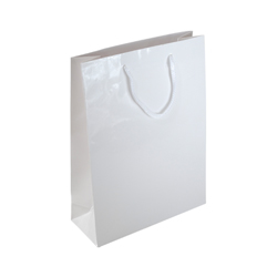 Medium-White-Paper Bag