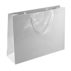 Large White Paper Gift Bag