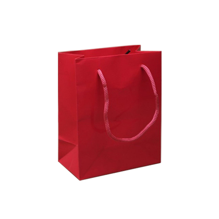 Ex Small Gloss Laminated Rope Handle Paper Bags-11x15x7cm
