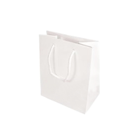 Small Gloss Laminated Paper Bags with Rope Handles-15x20x8cm