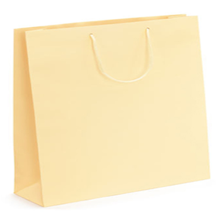 Ex Large Cream Matt Laminated Paper Bags