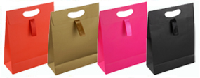Matt Laminated Ribbon Handle Paper Gift Bags