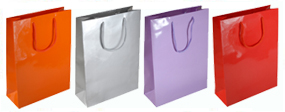Medium Gloss Laminated Rope Handle Paper Bags-25x34x10cm